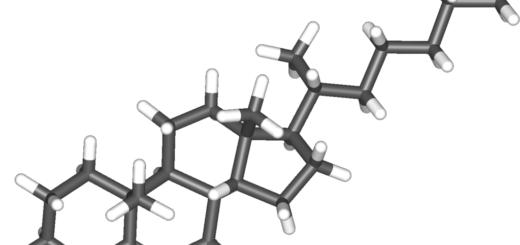 Рассасывание холестериновых бляшек при атеросклерозе
