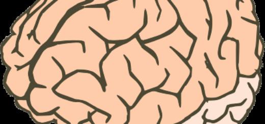 Холестериновые бляшки в сосудах мозга