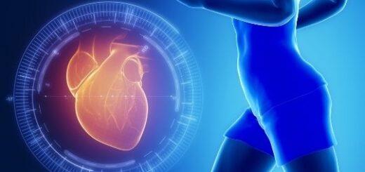 Сердце бегуна и обычного человека